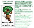 Menaces sur la forêt de Brocéliande...